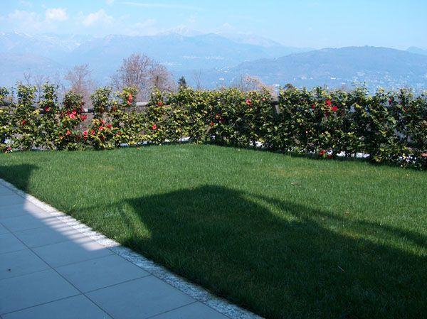 Baveno appartamento vista lago con garage e giardino AA1157